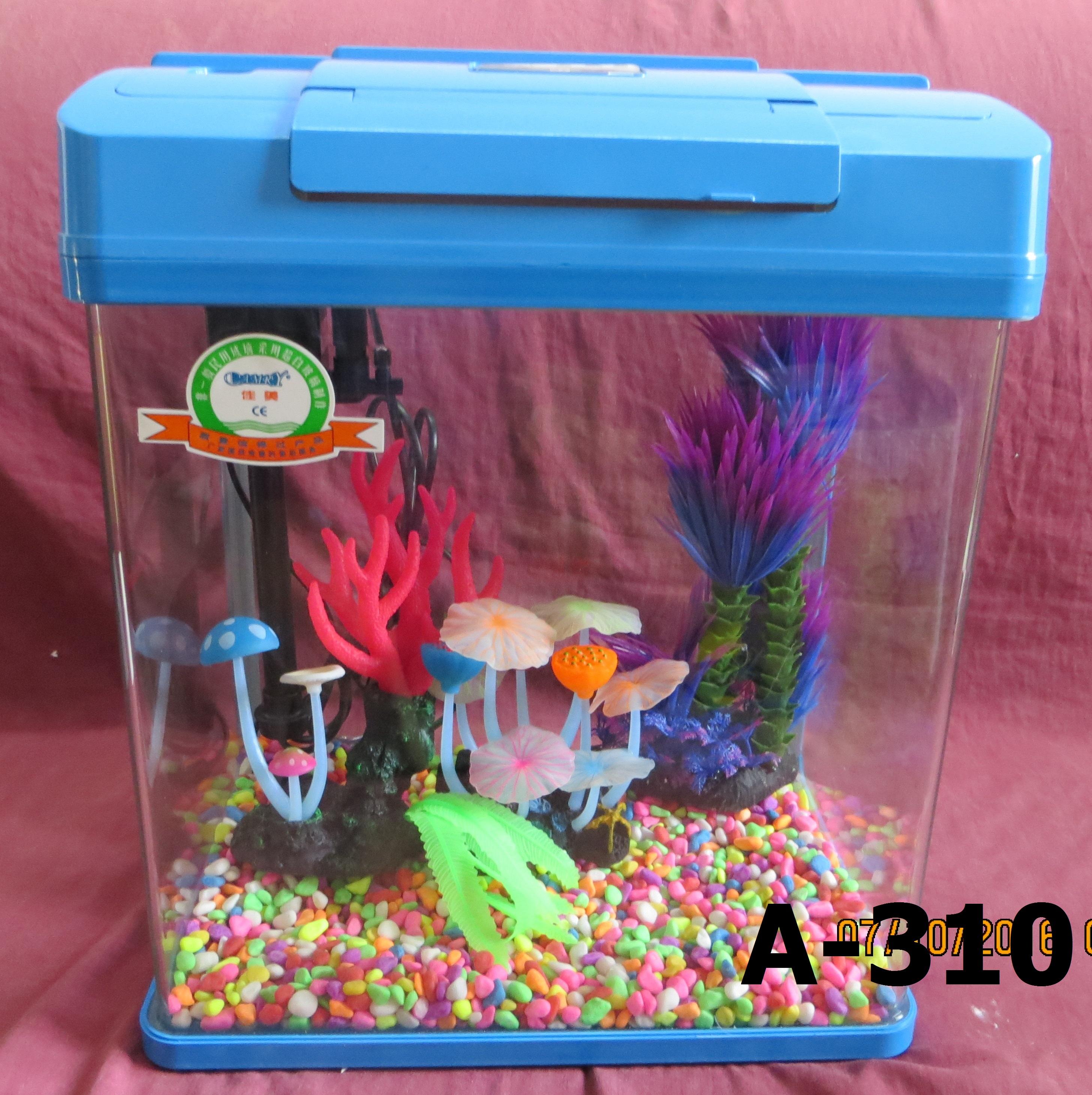 Fish aquarium in rawalpindi - Fish Aquarium In Rawalpindi